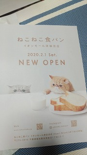 Blog20200220-2.jpg